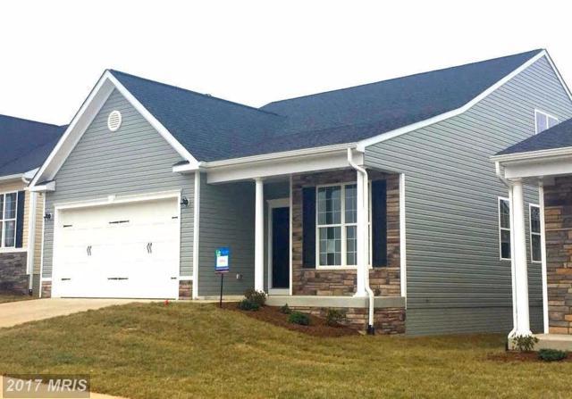 5802 Spring Arbor Lane, Fredericksburg, VA 22407 (#SP10110235) :: Pearson Smith Realty