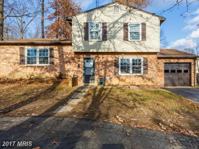 6017 Collier Drive, Fredericksburg, VA 22407 (#SP10118169) :: MidAtlantic Real Estate
