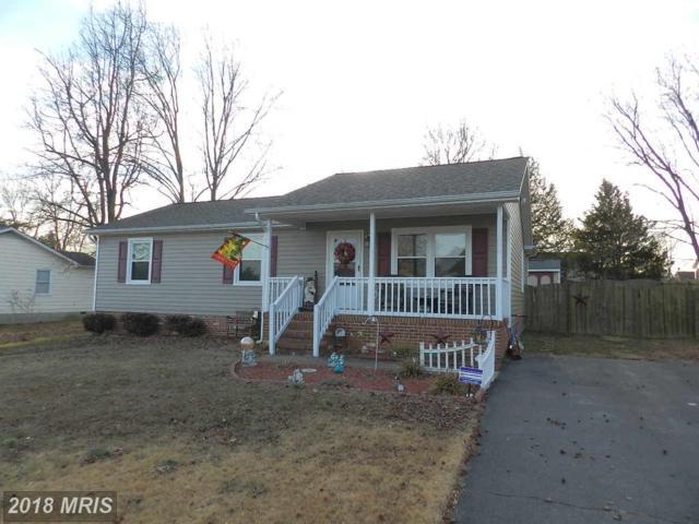 11222 Trisler Drive, Fredericksburg, VA 22407 (#SP10134718) :: Colgan Real Estate