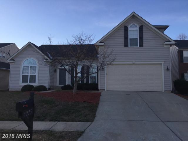5225 Yellow Birch Drive, Fredericksburg, VA 22407 (#SP10134757) :: Colgan Real Estate