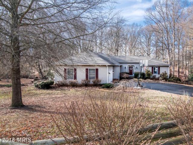 1530 Clover Drive, Fredericksburg, VA 22407 (#SP10134850) :: Colgan Real Estate
