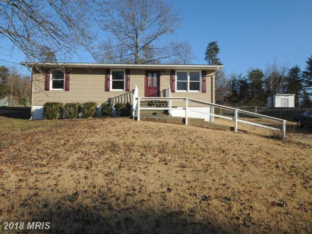 11009 Doe Circle, Fredericksburg, VA 22407 (#SP10135580) :: Pearson Smith Realty