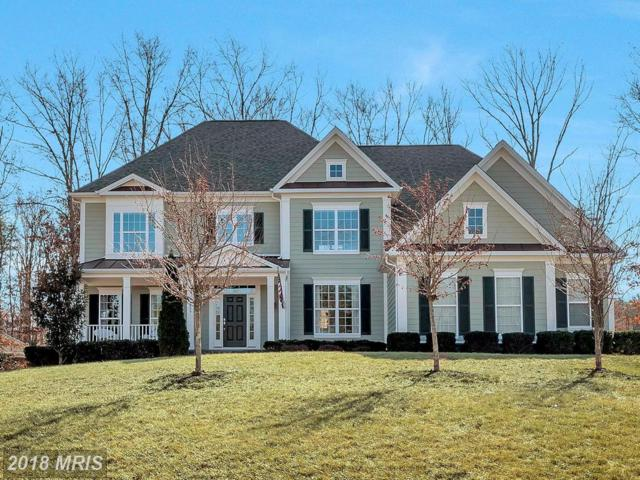 11209 Bluffs View, Spotsylvania, VA 22551 (#SP10148913) :: Green Tree Realty