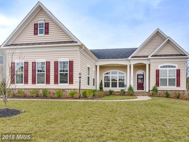 11704 Eagle Ridge Drive, Spotsylvania, VA 22551 (#SP10151258) :: Green Tree Realty