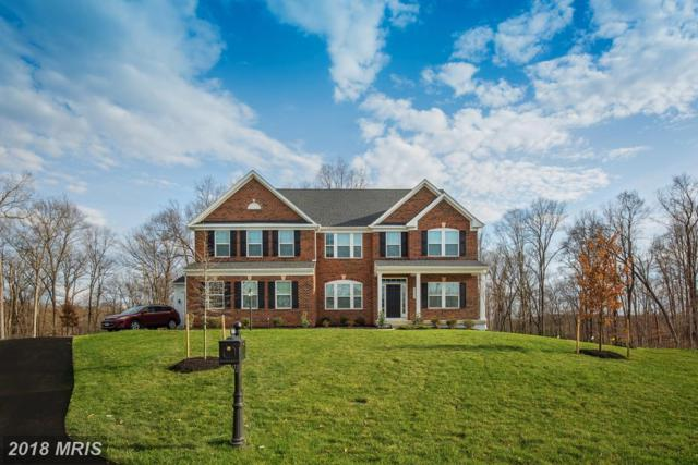 00004 Monterey Court, Fredericksburg, VA 22407 (#SP10158484) :: Green Tree Realty