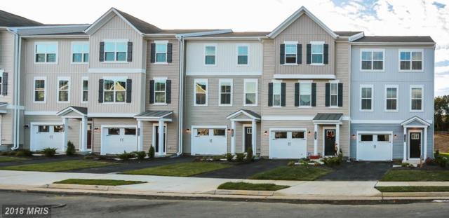 1619 Hudgins Farm Circle, Fredericksburg, VA 22408 (#SP10162679) :: Network Realty Group