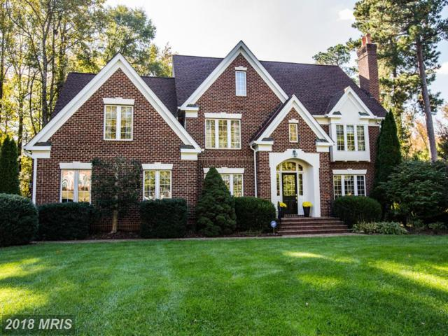 12707 Willow Point Drive, Fredericksburg, VA 22408 (#SP10164629) :: Green Tree Realty