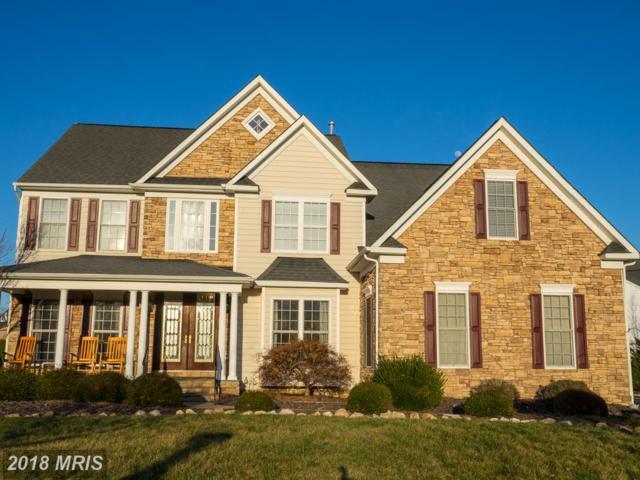 10721 Joshua Lane, Fredericksburg, VA 22408 (#SP10168954) :: Keller Williams Pat Hiban Real Estate Group