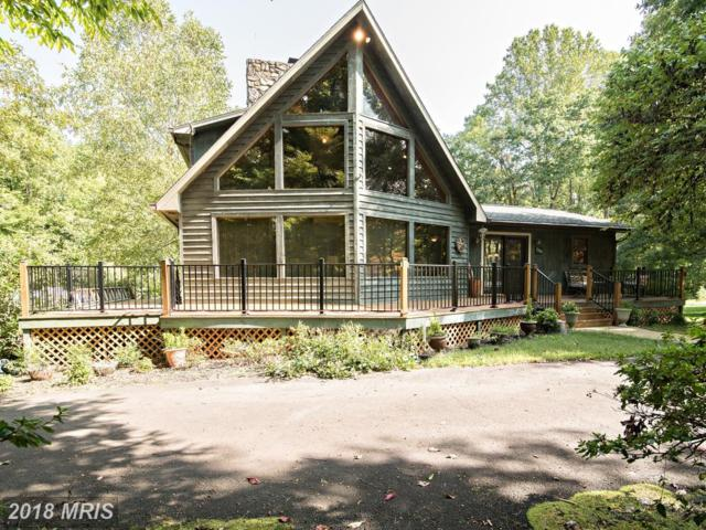 7301 Sugar Hollow Road, Orange, VA 22960 (#SP10174276) :: RE/MAX Cornerstone Realty