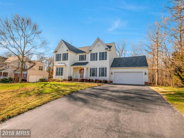 13114 Willow Point Drive, Fredericksburg, VA 22408 (#SP10177040) :: Green Tree Realty