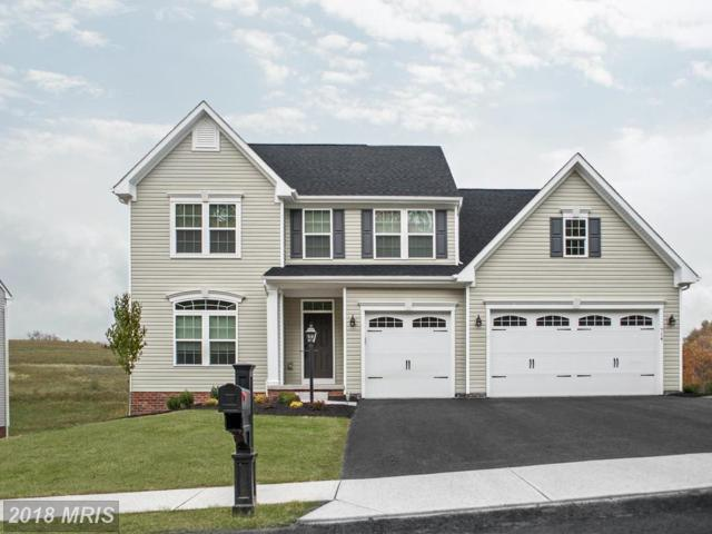 0008 Hermitage Drive, Fredericksburg, VA 22407 (#SP10182588) :: RE/MAX Cornerstone Realty
