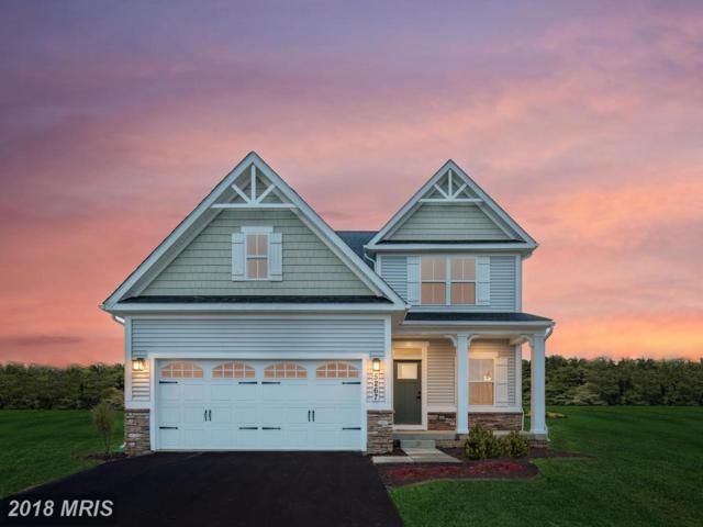 0001 Piney Glade Road, Fredericksburg, VA 22407 (#SP10182833) :: RE/MAX Cornerstone Realty