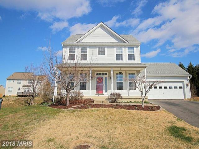 11218 Englewood Court, Fredericksburg, VA 22407 (#SP10183316) :: Colgan Real Estate