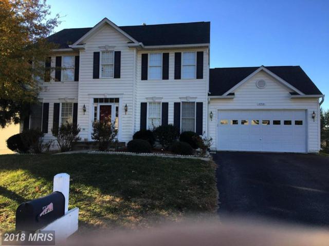 6910 Elon Drive, Fredericksburg, VA 22407 (#SP10187903) :: The Withrow Group at Long & Foster
