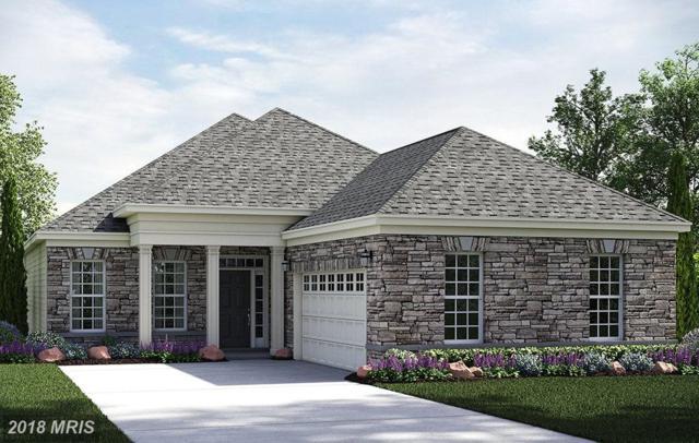 9916 Copper Beech Circle, Fredericksburg, VA 22407 (#SP10204187) :: Keller Williams Pat Hiban Real Estate Group