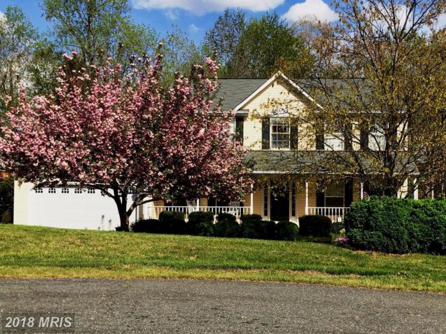13003 Crested Court, Fredericksburg, VA 22408 (#SP10205174) :: Green Tree Realty
