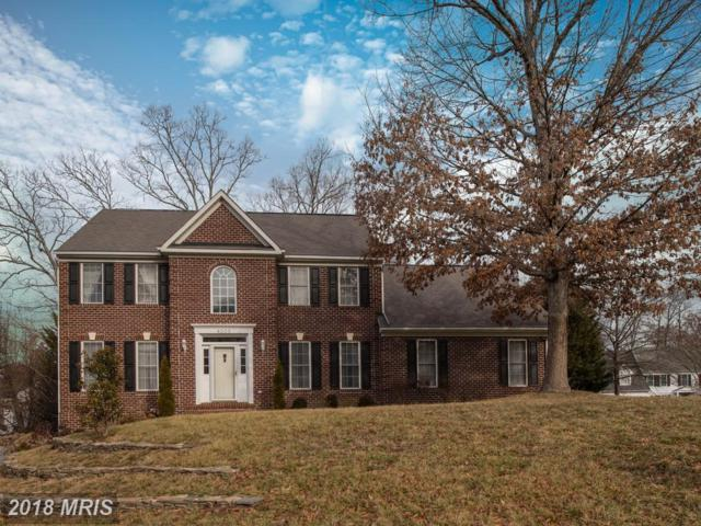 4005 State Place, Fredericksburg, VA 22408 (#SP10207698) :: Green Tree Realty