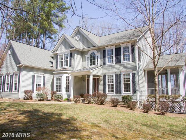 10623 Chatham Ridge Way, Spotsylvania, VA 22551 (#SP10210695) :: Keller Williams Pat Hiban Real Estate Group