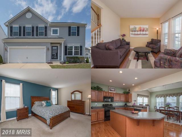 5815 Falls Grove Drive, Fredericksburg, VA 22407 (#SP10214136) :: AJ Team Realty