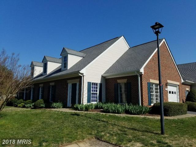 11000 Jaguar Court, Fredericksburg, VA 22407 (#SP10215345) :: Circadian Realty Group