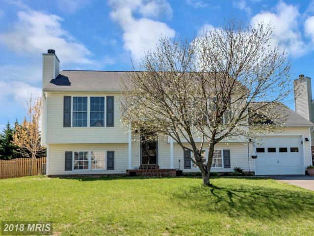 10414 Wisteria Drive, Fredericksburg, VA 22408 (#SP10216933) :: Green Tree Realty