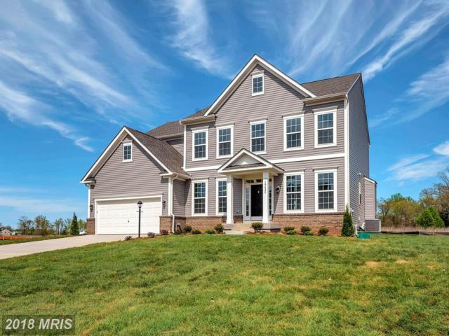 10425 Aspen Highlands Drive, Spotsylvania, VA 22553 (#SP10223315) :: The Gus Anthony Team