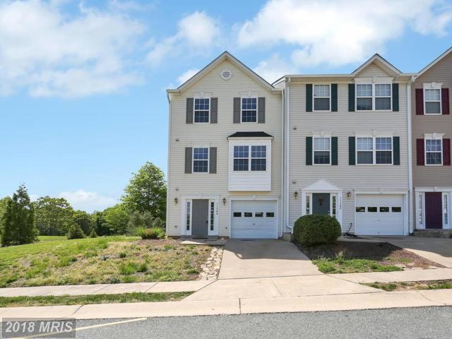 11300 Wytheville Lane, Fredericksburg, VA 22407 (#SP10238133) :: Circadian Realty Group