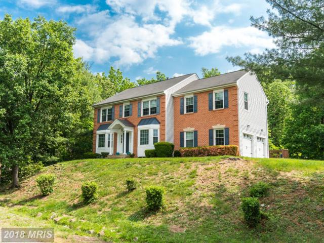 5900 Cambridge Drive, Fredericksburg, VA 22407 (#SP10244159) :: AJ Team Realty