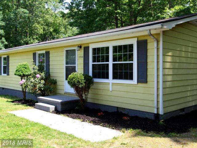 10908 Deer Drive, Fredericksburg, VA 22407 (#SP10245222) :: Green Tree Realty