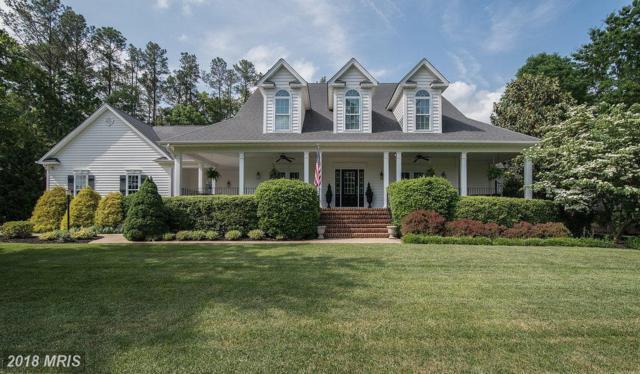 11502 Little Bay Harbor Way, Spotsylvania, VA 22551 (#SP10248333) :: Green Tree Realty