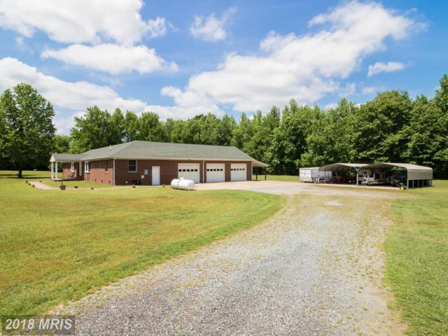 10436 Tidewater Trail, Fredericksburg, VA 22408 (#SP10248802) :: Wes Peters Group