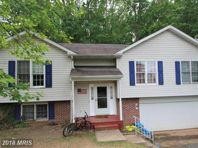 6702 Shallow Creek Court, Spotsylvania, VA 22553 (#SP10250176) :: RE/MAX Cornerstone Realty