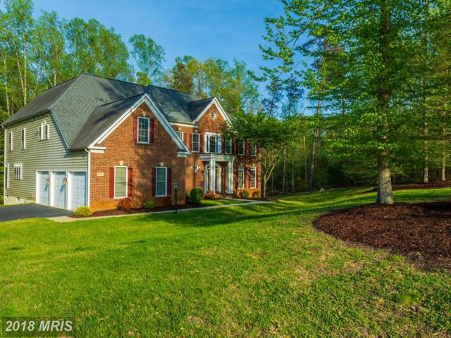 12911 Macneil Court, Fredericksburg, VA 22407 (#SP10250872) :: RE/MAX Cornerstone Realty