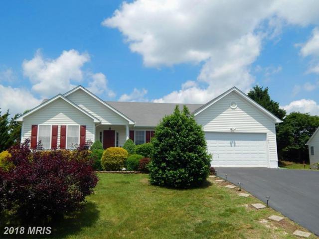 6017 Waterman Drive, Fredericksburg, VA 22407 (#SP10252743) :: Green Tree Realty
