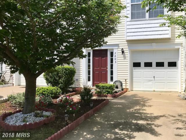 7203 Finch Lane, Fredericksburg, VA 22407 (#SP10252794) :: Green Tree Realty