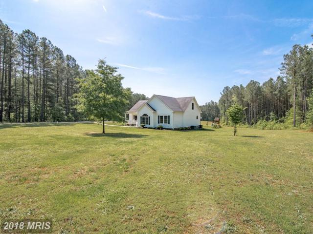6231 Horton Lane, Spotsylvania, VA 22551 (#SP10252825) :: Green Tree Realty