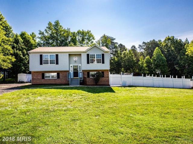 11803 Nicholas Drive, Fredericksburg, VA 22407 (#SP10268270) :: The Miller Team