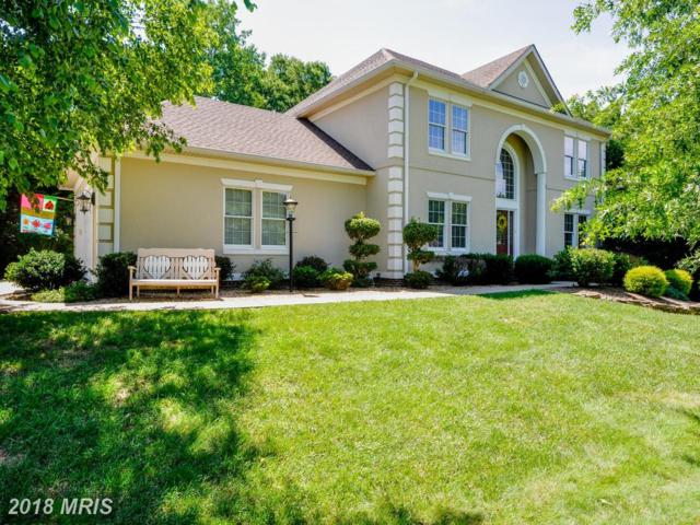 12905 Trench Court, Fredericksburg, VA 22407 (MLS #SP10272556) :: Explore Realty Group