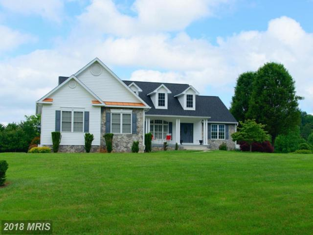 15701 Loblolly Lane, Mineral, VA 23117 (#SP10274986) :: The Gus Anthony Team