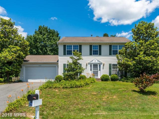 3809 Winding Hollow Drive, Fredericksburg, VA 22408 (#SP10275841) :: Green Tree Realty