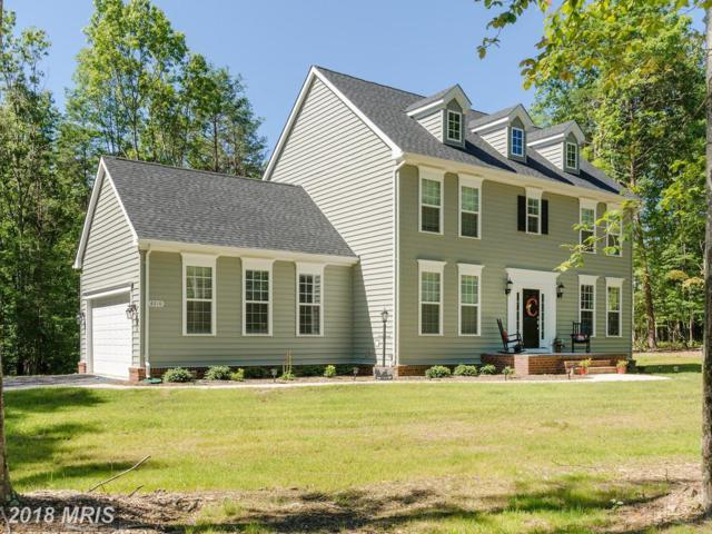 13006 North French Court, Fredericksburg, VA 22407 (#SP10278548) :: Network Realty Group