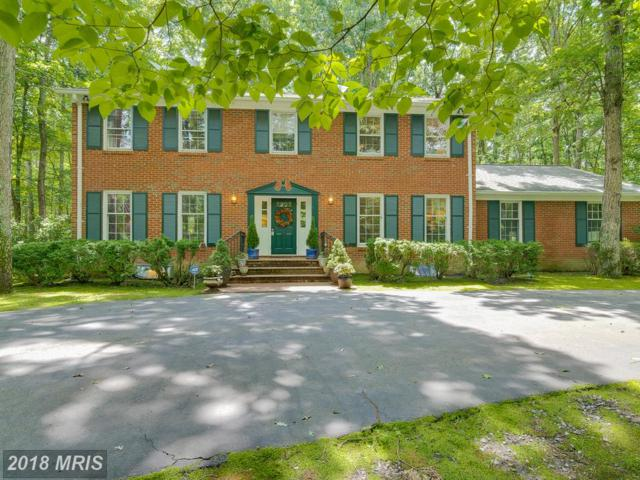6 Olde Plantation Drive, Fredericksburg, VA 22407 (#SP10281422) :: Bob Lucido Team of Keller Williams Integrity