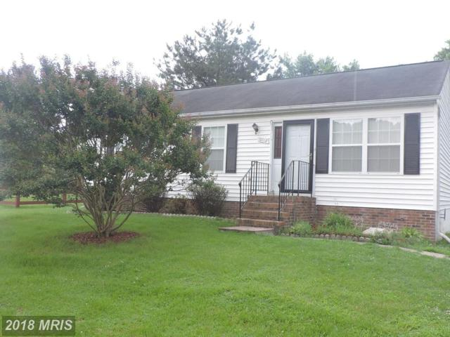 10812 Peach Tree Drive, Fredericksburg, VA 22407 (MLS #SP10282055) :: Explore Realty Group