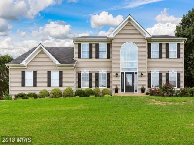 9700 Westerlo Court, Fredericksburg, VA 22407 (#SP10284686) :: Green Tree Realty