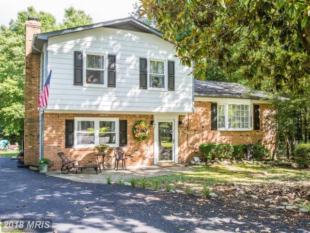 3 Mickey Court, Fredericksburg, VA 22407 (MLS #SP10285882) :: Explore Realty Group