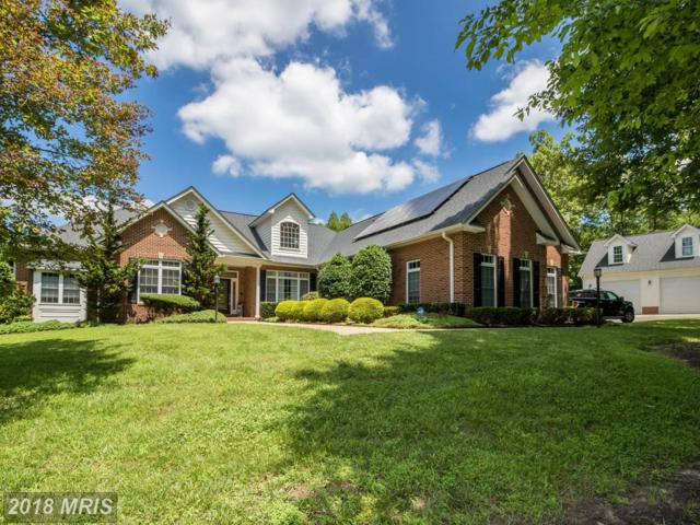 4031 Claiborne Plantation Way, Fredericksburg, VA 22408 (MLS #SP10287538) :: Explore Realty Group