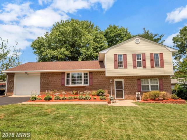 817 Douglas Street, Fredericksburg, VA 22407 (MLS #SP10288615) :: Explore Realty Group