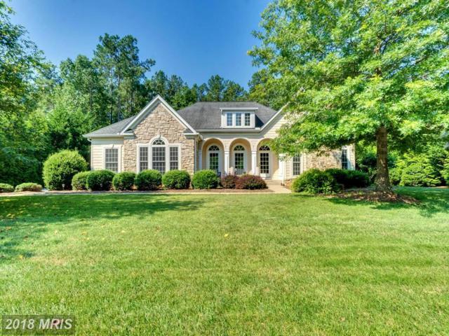 10800 Cedar Creek Drive, Spotsylvania, VA 22551 (#SP10289727) :: LoCoMusings