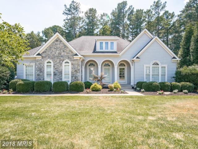10704 Cedar Creek Drive, Spotsylvania, VA 22551 (#SP10295547) :: LoCoMusings