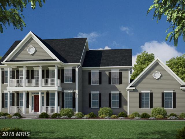 12906 South French Court, Fredericksburg, VA 22407 (MLS #SP10296764) :: Explore Realty Group